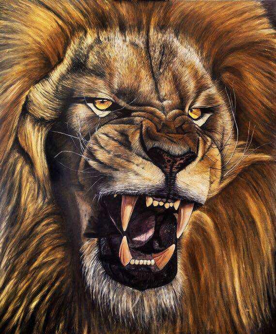ציור של אריה