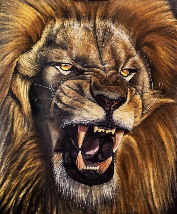אריה שואג